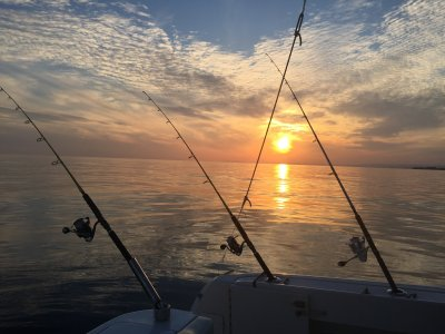 Monty Charter Pesca