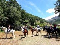Caballos durante la ruta en Valle del Jerte