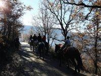 paseos en caballo Los Pilones