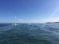 宏达瑞比亚的摩托艇路线