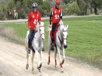 Learning horse riding with us