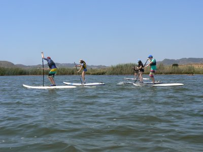Aqua Watersports Paddle Surf
