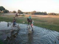 Equitazione con la famiglia a El Rocío