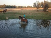 Touring Doñana a cavallo