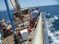 navegando a vela con 22 nudos de viento