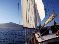 Navegando plácidamente