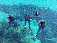 Grupo de buceo en el Mediterraneo