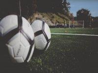草地上的足球