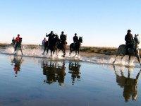 骑马穿越水域