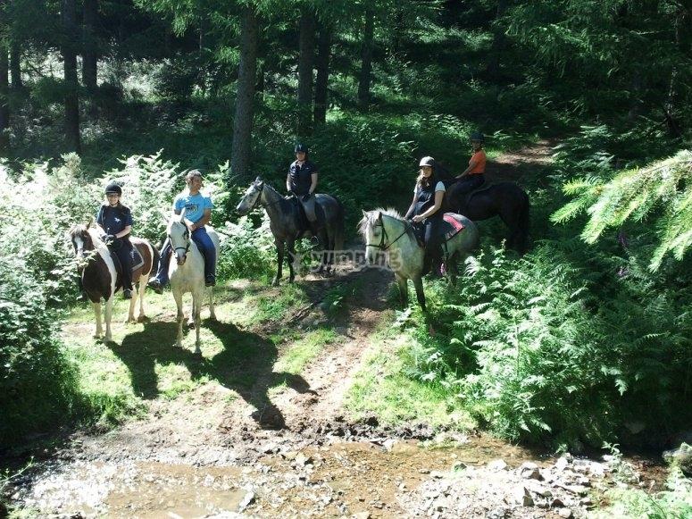 Ruta a caballo en el campo