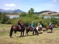 Excursión a caballo, medio día