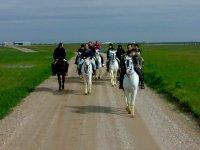 Ruta a caballo por Olivares