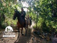 Disfruta de una ruta a caballo
