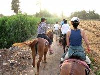 骑马游览乡村