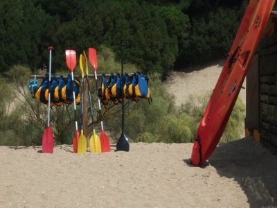 桨冲浪材料出租1小时和meda韦尔瓦