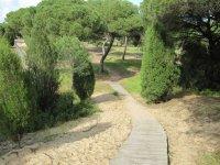 韦尔瓦自然公园的定位