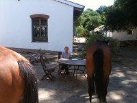 Mujer con caballos