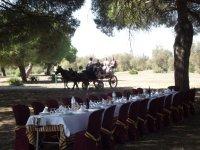 Coche de caballos y mesa para eventos