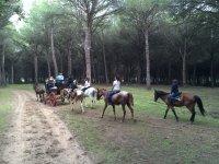 Siguiendo al coche de caballos