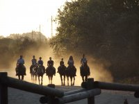 Horseback riding on the Rocio