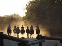 Paseando a caballo por el Rocio