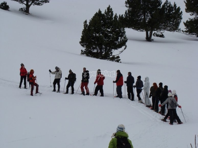 Iniciación en las raquetas de nieve