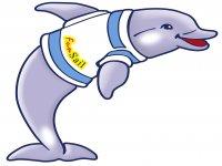 Fun Sail Avistamiento de Cetáceos