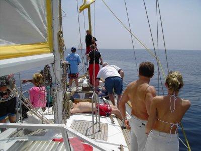 Fun Sail
