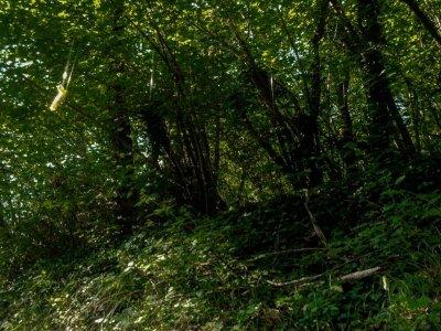 8h ruta de senderismo, Los Humbrales de la tierra
