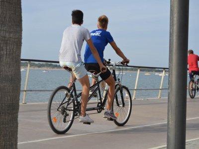BIke Tour Doñana Alquiler de bicicletas