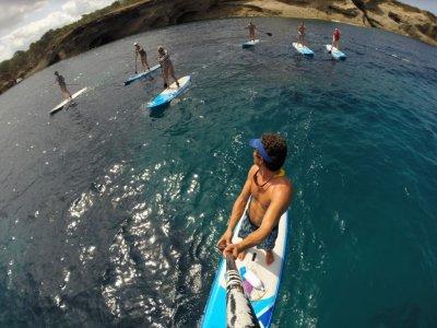 Sup Paradise Ibiza Paddle Surf