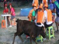 Organización de juegos con vaquillas