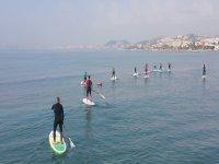 Alquiler  de Paddle Surf 1/2  horas