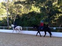Clases de equitación en el campamento