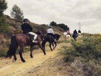 Ruta a caballo por los alrededores