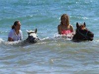 Con los caballos metidas en el mar