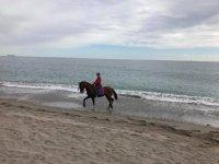 Cabalgando en la playa