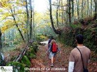 Sierra de Bejar
