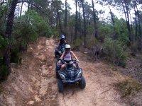 Tour por bosque en quad