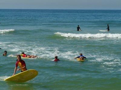 Ega Surf