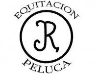 Yeguada Peluca