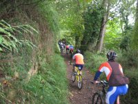 Con la bici nella foresta