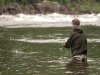 pescando en el agua