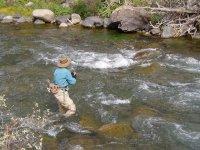 pescando rio con rocas