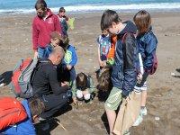 在海滩上的环保课程