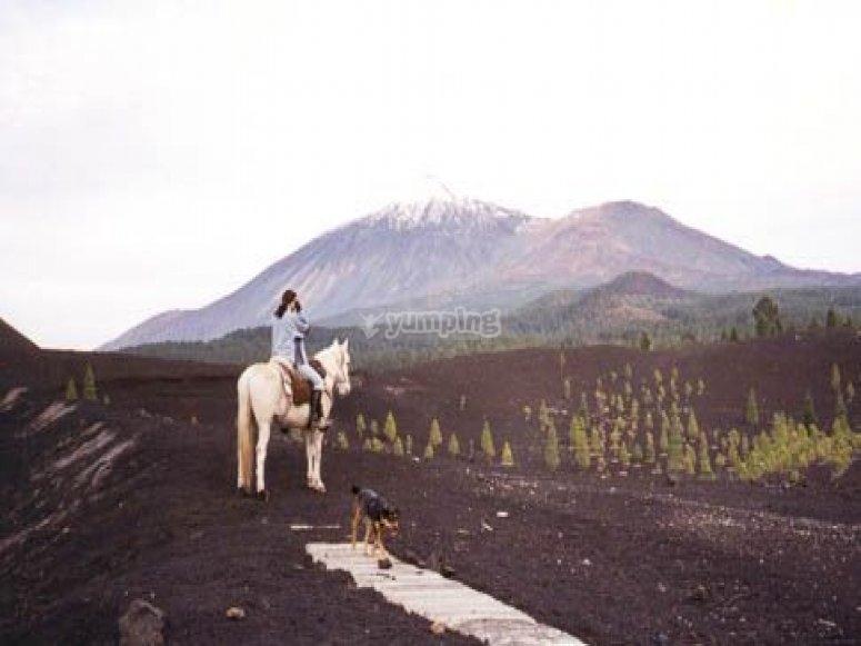 preciosa ruta a caballo