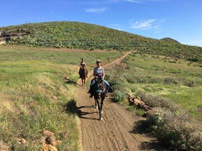 Paseo a caballo en Telde de 2 horas 30 min