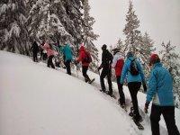 Excursion de Raquetas de Nieve
