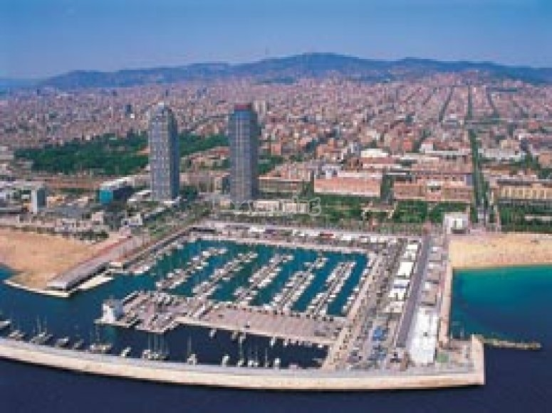 Paseo en helic ptero port olimpic de gaudi barcelona for Paracaidismo barcelona ofertas