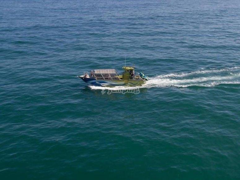 Embarcaciones para tus eventos